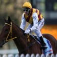 The DONCASTER HANDICAP preview: It is nearly the highlight of the Sydney carnival and promises to be another cracking event. Here is how I see it being run and won....