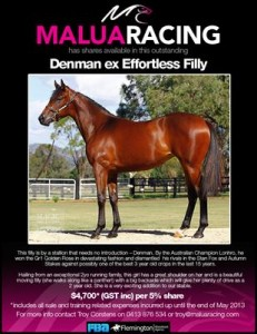 Denman ex Effortless Filly2