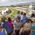 CAIRNS AMATEURS Day 1- Always a cracking day out, here is just a very quick look with the top selections of each race* *Will have updated FRIDAY morning   400% […]