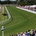 It's CAIRNS CUP day SUNDAY. I love this track and this will be an excellent form guide for the Cairns Amateurs card.  BLACKBOOKERS: Man Around Town– Sun Aug 14 […]