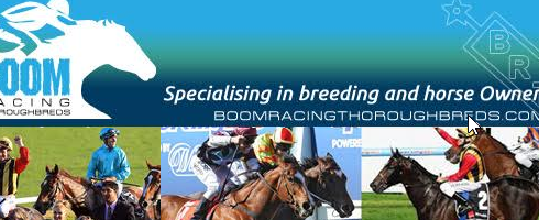 **Here is the latest newsletter from BOOM RACING THOROUGHBREDS   The Highs and Low – This breeding game is testing!!! As I have said numerous times over the past […]