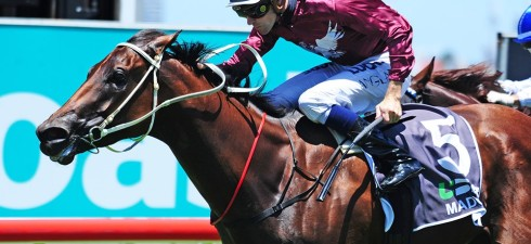 Everywhere is starting to dry out after an amazing amount of rain. I's day we'd be around a Soft 6 at Doomben and probably a Heavy 8 at the Goldie. […]
