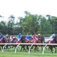 Bets outside of Doomben Saturday for those looking elsewhere. FEEL FREE TO SEND TO MATES via text/email link.   BRISSYRACES Join EXCLUSIVE Deposit $50 get $200 In Bonus Bets!! http://www.ladbrokes.com.au/signup/?a=618822&d=BRISSYRACES200     […]