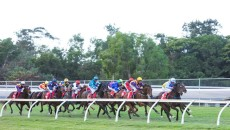 It's a heavy 8 at Lismore and not a meeting I want to have many bets at. Case of last chance for my one selection today.  Race 7 No.3- […]