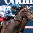 Amphitrite has emerged as one of Australia's most progressive and exciting gallopers after an amazing win in today's Group One Thousand Guineas (1600m) at Caulfield.     The untapped filly, […]
