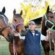 """Welcome to another """"One on One"""" Interview where Gibbo catches up with some of the players in our racing industry to find out what makes them tick, and give you […]"""