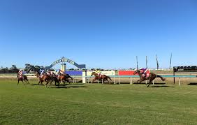 For those interested I've done the Mackay form for BetEasy. Looks a very even card of racing. Link: https://beteasy.com.au/racing-betting/horse-racing/mackay/20200630/race-1-1777130-57846211