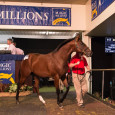 Gemma's Son confirmed his status as Western Australia's best juvenile by extending his unbeaten career in today's $250,000 Magic Millions WA 2YO Classic (RL, 1200m) at Pinjarra. Sent out the […]