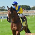 Racing heads to EAGLE FARM for the metropolitan meeting Saturday. Not a meeting that grabs me by any means. Track has been playing to the front so that is what […]